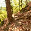 Über Stock und Stein im Naturpfad Weltende