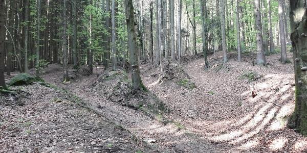 steile Hohlwege am Beginn der Wasserfälle - der linke ist der markierte Weg