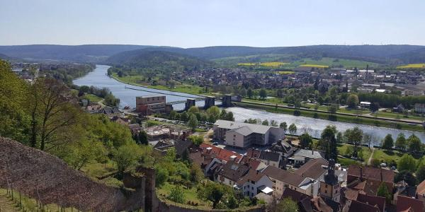 Blick von der Clingenburg