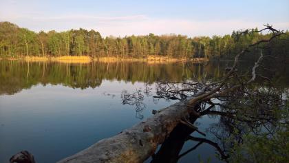 Kleiner Lienewitzsee