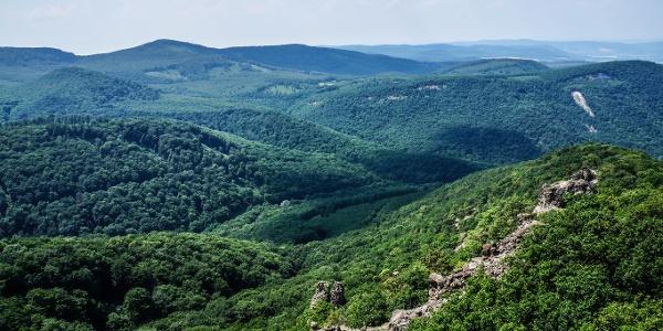 A hegység belseje felé