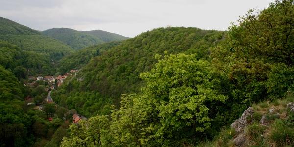 Alsóhámor látképe a Molnár-szikláról