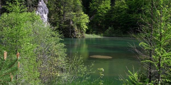 Der Stausee im Naturpark Mürzer Oberland
