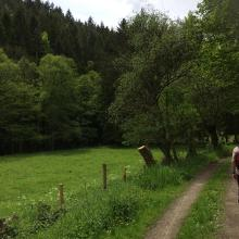 Foto von Wanderung: Vossenack: Vier Täler-Wanderung • Eifel (21.05.2017 20:32:45 #4)