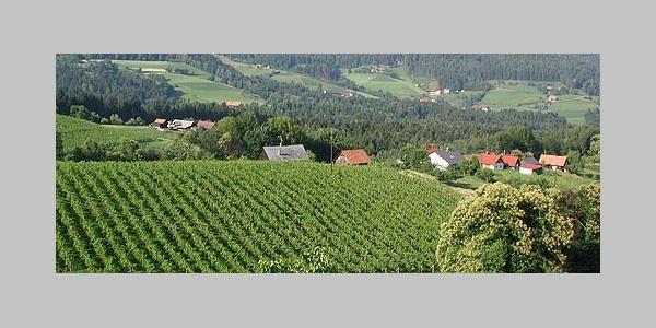 Weingut Pühringer