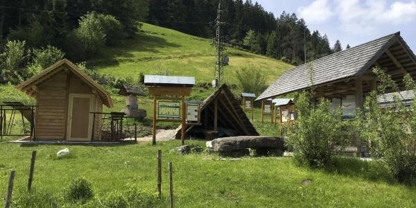 Wald-Kultur-Haus Bad Rippoldsau