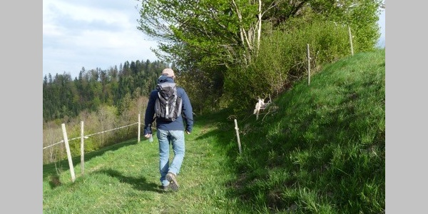 Wandern am Urkräuterweg