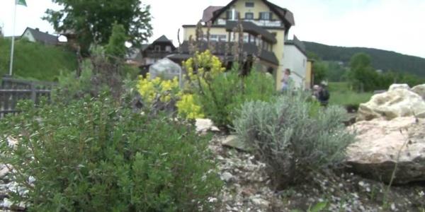 Wanderregion Joglland-Waldheimat
