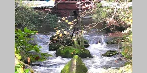 Wildwasserrennen in Irrel