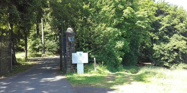 Eingang der Altburg heute