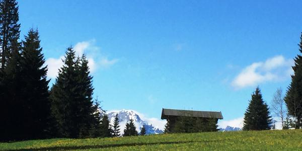 Oberallgäuer Runwanderweg Richtung Schwende (Riezlern)