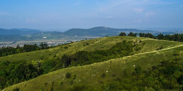 V pozadí vrchy Kevélyek (Nagy-Szénás)