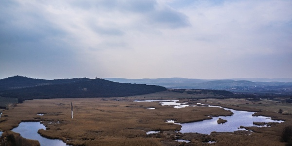 A Külső-tó vízfelületéből nem sok látszik ki
