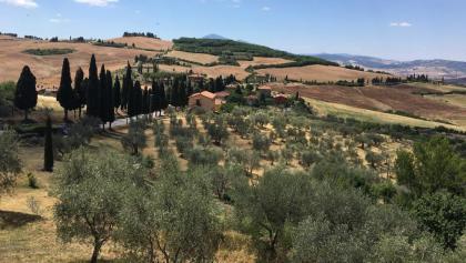 View from Montichiello