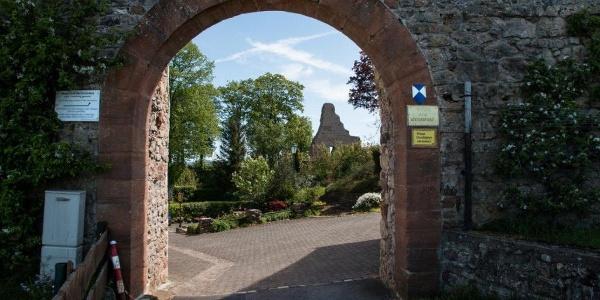 Gerolstein, Ruine Löwenburg