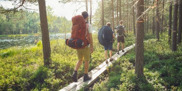 Hiking in Nuuksio National  Park