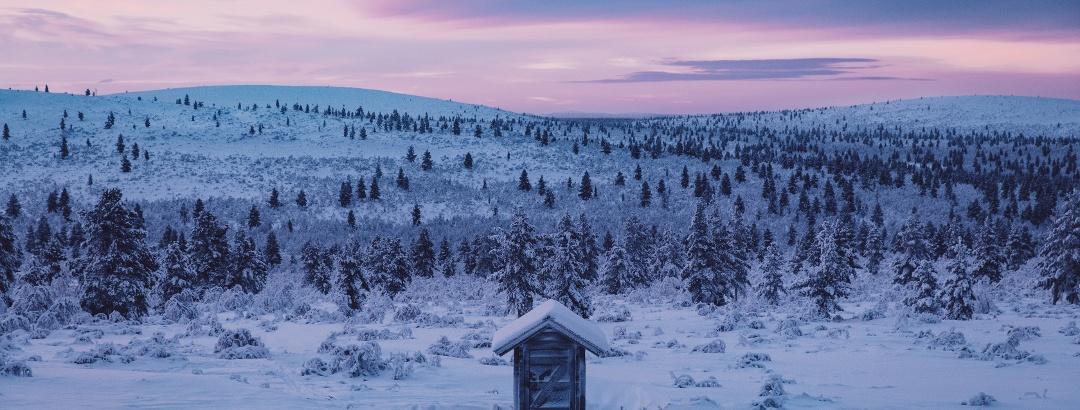 Urho Kekkonen National Park, Inari-Saariselkä, Finland