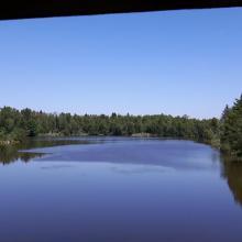 Blick von der Aussichtsplattform am großen Vogelsee
