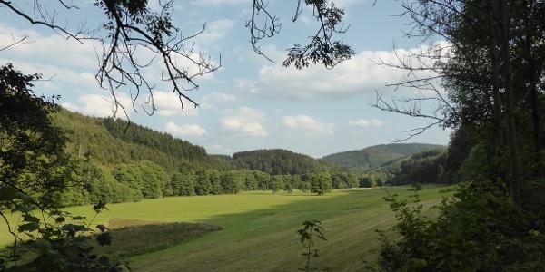 Durch den Vildischen Grund geht es in Richtung Küstelberg.