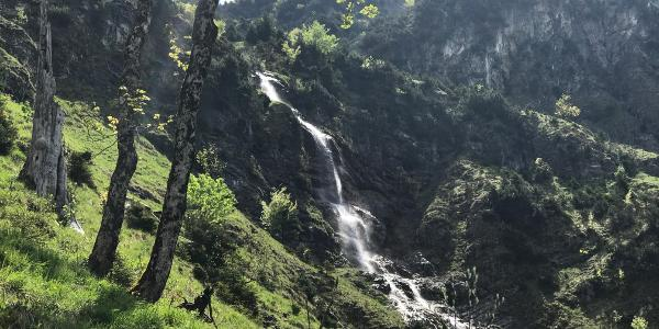 Der schöne Wasserfall im unteren Bereich des Zustiegs