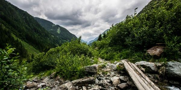Auf dem Weg zur Keinprechthütte - Blick talauswärts ins Obertal
