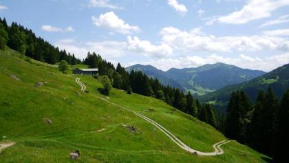Blick auf die Klösterle-Alpe