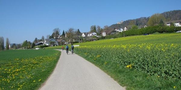 Radweg nach Stein am Rhein