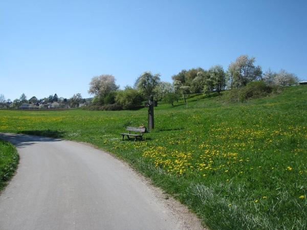 Radweg Horn - Gaienhofen