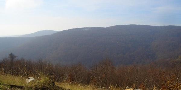 A Szén-patak-völgy túloldala