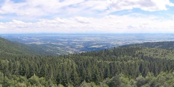 Panorama vom Hirschenstein-Turm