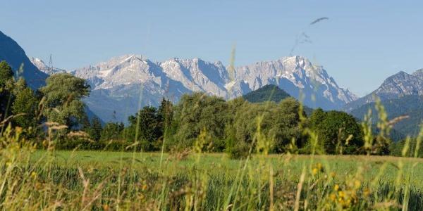 Wanderung - Nach Eschenlohe über Buchenried - Blick ins Wettersteingebirge