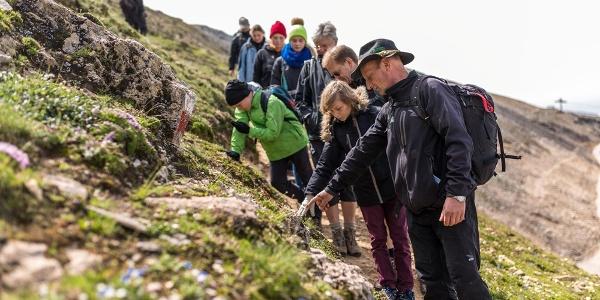 Führung am Geotrail mit Nationalpark-Ranger