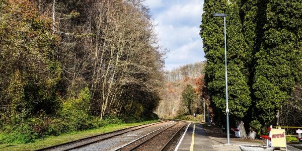 Az állomás peronjai