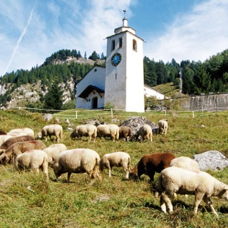 Romanische Kirche in Ausserferrera
