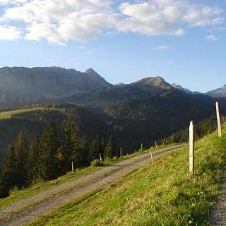 Alp Honegg avec vue sur le Giswilerstock