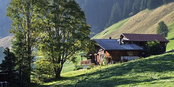Turbach valley