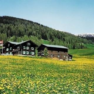 Walser-Häuser bei Davos Glaris