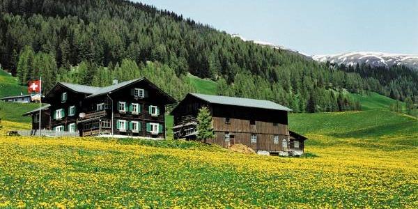Valais-style houses near Davos Glaris