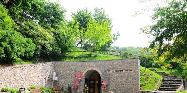 A tettyei Mésztufa-barlang  bejárata