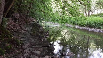 Am Fluss, zu Fuss