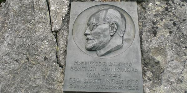 Prof.Dr.Günther Schlesinger