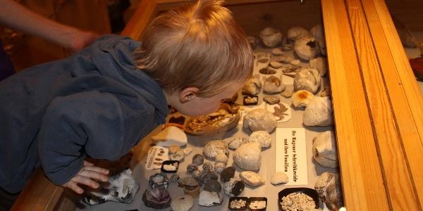 Vogtländisches Gold- und Naturalienmuseum