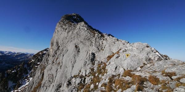Bergtour: auf den Gimpel im Tannheimer Tal