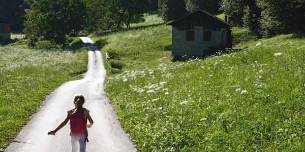 Unter Feldblumen und Hütten