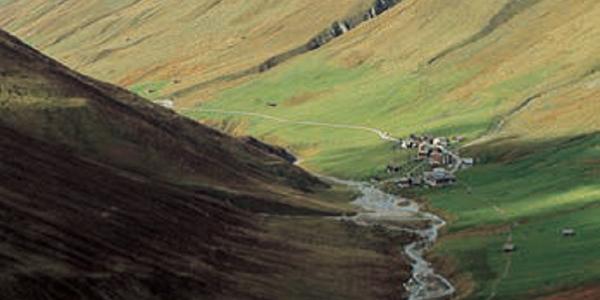 Alp Tombal