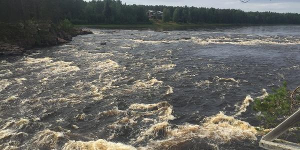 Molkoköngas (Finnisch-Lappland)