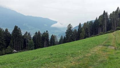 Am Ende des steilen Stegs durch den Wald