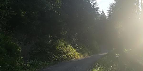 Aufwärts auf der gut zu fahrenden Schotterstraße