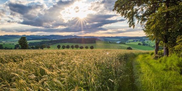 Herscheid in der Ferienregion Eslohe