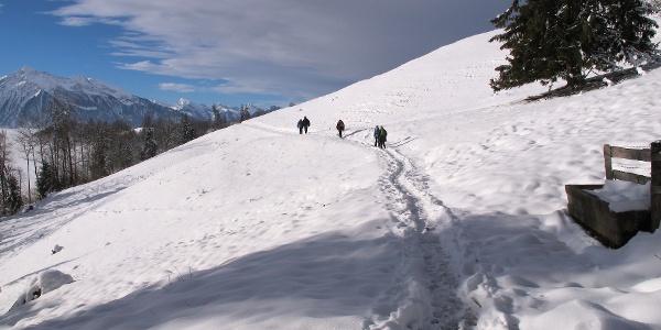 Winterwanderweg zum Niesenbänkli.